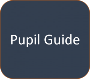 pupil-guide
